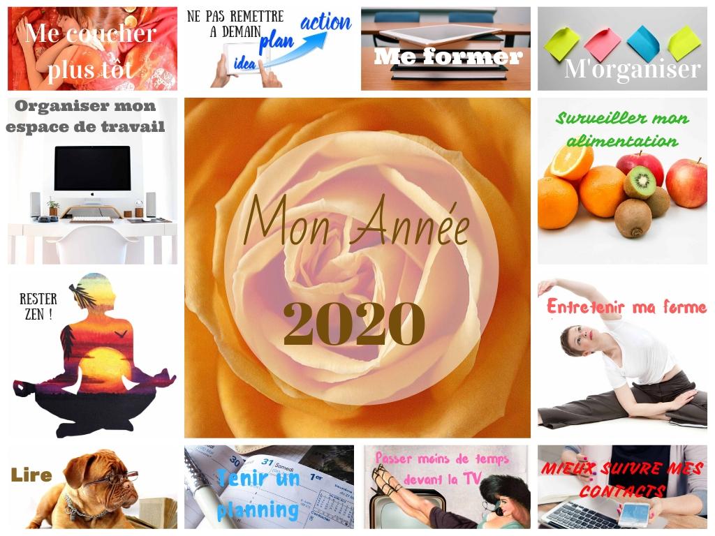 Mon année 2020 - Tableau de visualisation