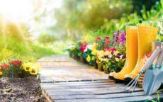 Produits pour le jardin en vente directe